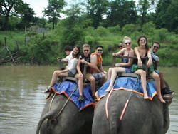 Chitwan tour picture