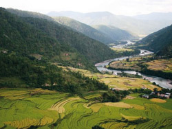 punakha-winter-trekking